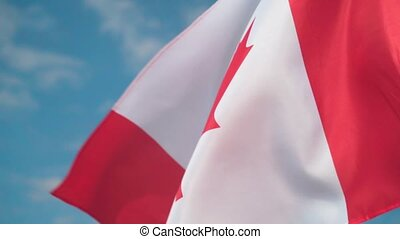 Flag of Canada. The flag of Canada develops in the wind against a sky.