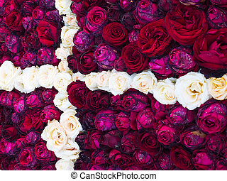 Flag of Denmark made of red and white roses flowers