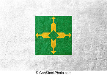 Flag of Distrito Federal, Brazil, painted on leather texture