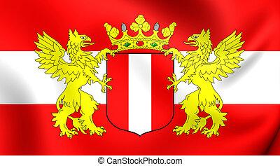 Flag of Dordrecht City, Netherlands. - 3D Flag of Dordrecht...