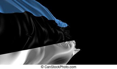Flag of Estonia - Beautiful 3d animation of Estonia flag...