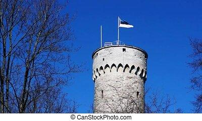 Flag of Estonia waving on big tower