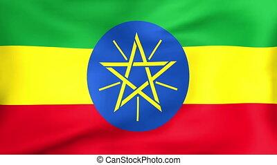 Flag Of Ethiopia - Developing the flag of Ethiopia