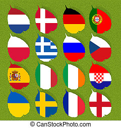 Flag of football soccer on green grass background