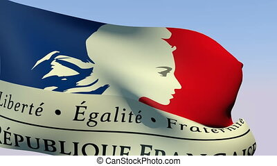 Flag of France Government - Flags of the world collection -...