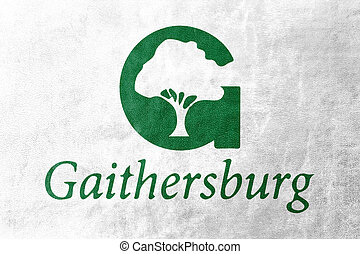 Flag of Gaithersburg, Maryland, USA, painted on leather texture