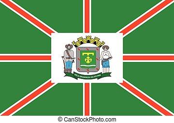 Flag of Goiania, Goias State, Brazil. Vector Format