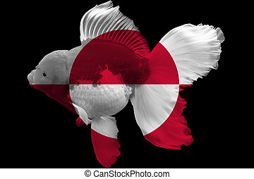 Flag of Greenland on goldfish