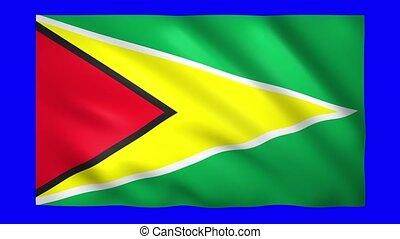 Flag of Guyana on green screen for chroma key