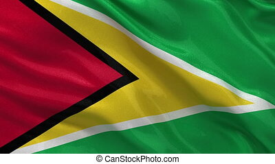 Flag of Guyana - seamless loop
