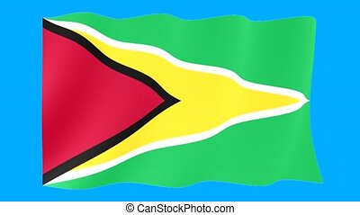 Flag of Guyana. Waving flag (PNG) computer animatie.