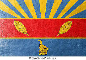 Flag of Harare, Zimbabwe, painted on leather texture