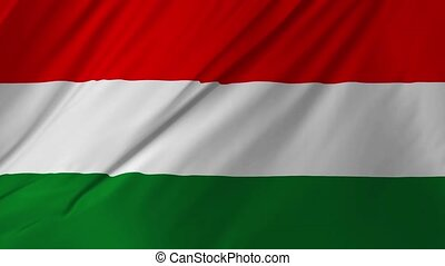 Flag of Hungary gently waving in the wind 2 in 1 - Flag of...