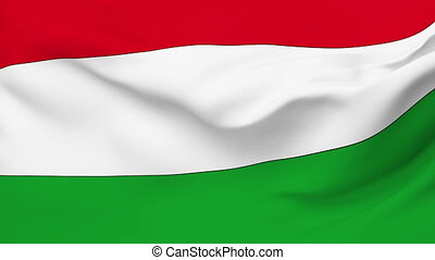 Flag of Hungary - Flag of the Hungary waving in the wind....