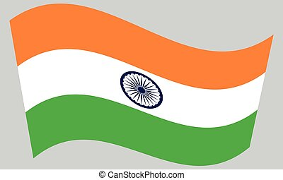 Flag of India waving on gray background