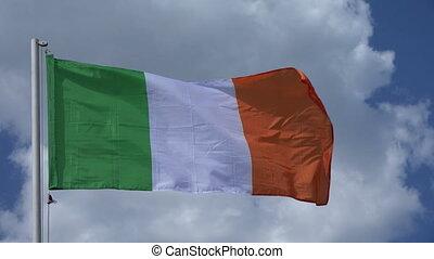Flag Of Ireland.