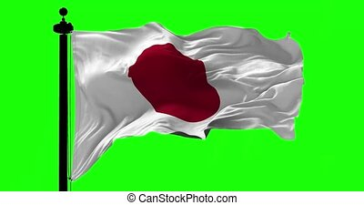 Flag of Japan on Green