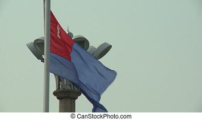 Flag of Johor on Flagpole - Steady, medium close up shot of...