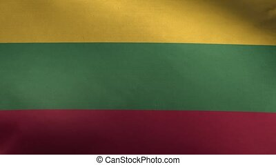 Flag of Lithuania Loop 3D