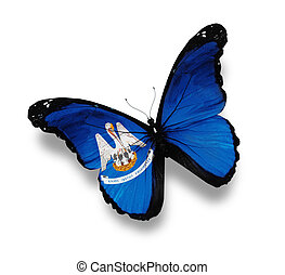 Flag of Louisiana butterfly, isolated on white