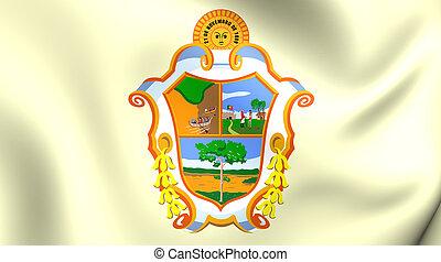 Flag of Manaus, Brazil.