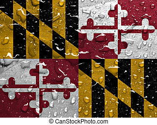 flag of Maryland with rain drops