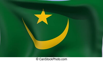 Flag of Mauritania - Flags of the world collection -...