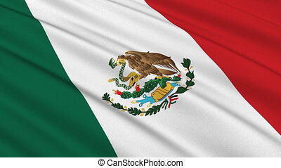 Flag of Mexico waving in the wind - highly detailed fabric texture - seamless looping
