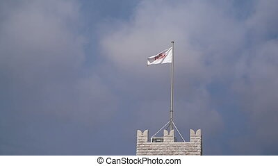 Flag of Monaco waving in the wind with flagpole