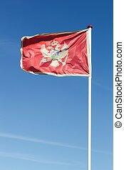 Flag of Montenegro waving in the sky