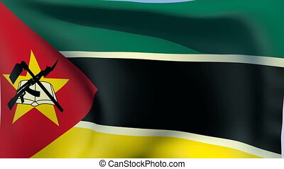Flag of Mozambique - Flags of the world collection -...