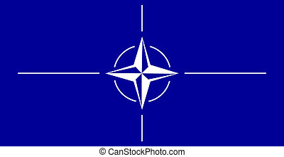 flag of NATO - color isolated vector illustration of the...