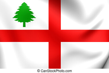 Flag of New England (1686) - 3D Flag of the New England...