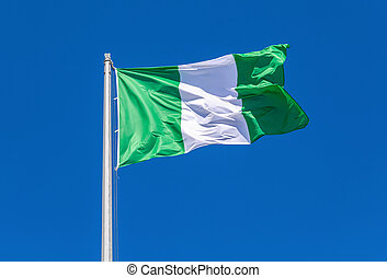 Flag of Nigeria waving in the wind against the sky