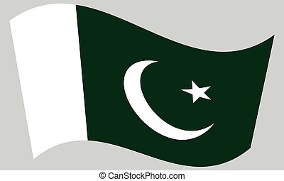 Flag of Pakistan waving on gray background
