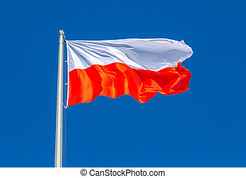 Flag of Poland waving in the wind against the sky