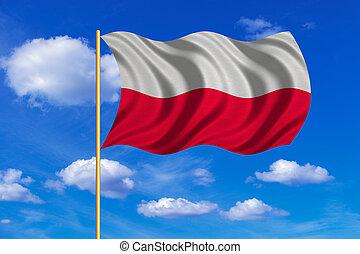 Flag of Poland waving on blue sky background