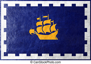 Flag of Quebec City, painted on leather texture