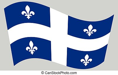 Flag of Quebec waving on gray background