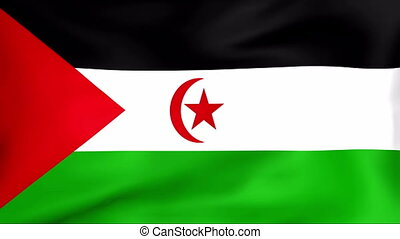 Flag Of Sahrawi Arab Democratic Republic - Developing the...