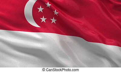 Flag of Singapore seamless loop
