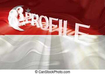 Flag of Singapore wavy profile