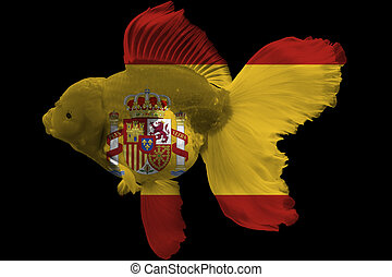 Flag of Spain on goldfish with black background.