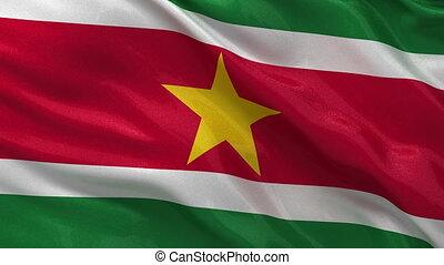 Flag of Suriname - seamless loop