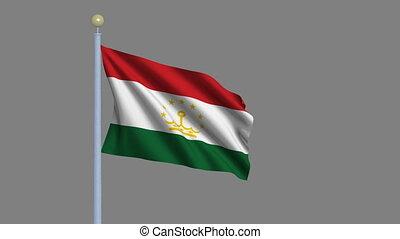 Flag of Tajikistan waving in the wind