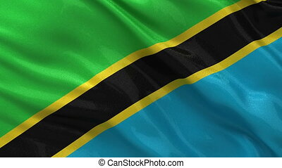 Flag of Tanzania - seamless loop - Flag of Tanzania gently...