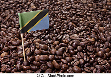 Flag of Tanzania sticking in coffee beans.(series)