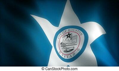 Flag of Texas Houston