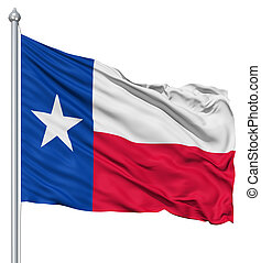 Flag of Texas - Texas national flag waving in the wind