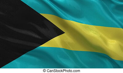 Flag of the Bahamas seamless loop